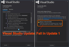 Visual Studio Update 2: up to 3 Days lost in Action and Effort