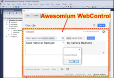 Awesomium: Code example in Windows Forms