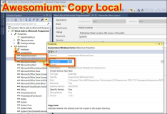 Publish Winforms with Awesomium in use