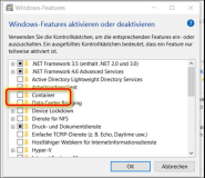 Windows 10: Required Windows FeatureContainers is not enabled
