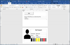 Word Template: Attaching various photos and data from an Excel file