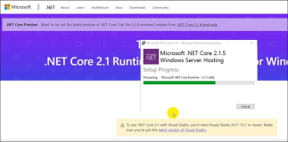 Installation of .NET Core 2.1 on a web server